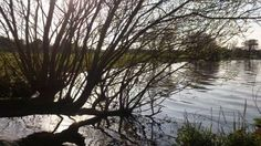 Running At Lough Neagh Running Pictures