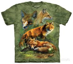 Youth: Red Fox Collage T-shirts at AllPosters.com