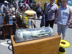 Long Beach Antique Market    Where else can you get an actual alien.    photo by Lisa Hackenberg