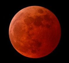 This year seems to be the year of astronomical delight! Just after 15 days of a total eclipse of the Sun, today the full moon will be totally eclipsed. This beautiful total lunar eclipse will dazzle sky-watchers in the western half of North America. Blood Red Moon, Blood Moon Eclipse, Total Eclipse, Lunar Eclipse, Moon Moon, Full Moon, Philip Glass, Shoot The Moon, Nature