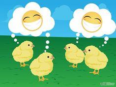 Crie, no mínimo, de 3 a 6 pintinhos. As galinhas são criaturas muito sociáveis, por isso você deve planejar em manter pelo menos 3-6 aves para que sirvam de compania entre si. Ter um ou dois extras também não é uma má idéia, para o caso de algumas de suas galinhas serem vítimas de predadores ou de doenças. Além disso, as galinhas normalmente colocam 5-6 ovos por semana, por isso quatro galinhas fornecerão quase duas dúzias de ovos por semana. Quanto mais galinhas, mais ovos!