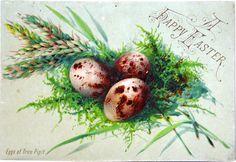 4285608626 070c3c840d 1880s Victorian Easter Card L