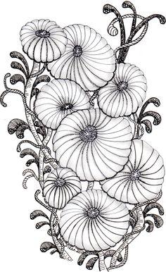 Chrysanthemum - Tangle178 - DIann2012