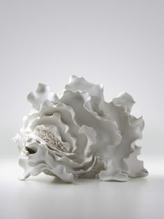 Noriko Kuresumi, a Japanese artist making anemone-looking sea creatures out of porcelain.