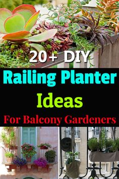DIY Railing Planter Ideas For Balcony Gardeners These DIY Railing Planter Ideas can create more space and provide visual interest to your balcony garden. Balcony Railing Planters, Balcony Plants, Herb Planters, Balcony Gardening, Greenhouse Gardening, Potted Plants, Bucket Gardening, Container Gardening, Gardening Tips