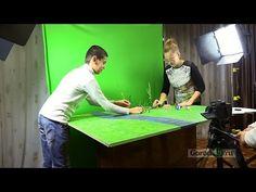 (3) Как самому создать мультфильм - YouTube
