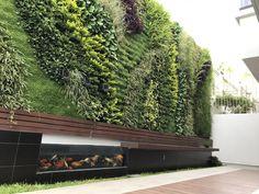 Muro verde Green wall Jardin vertical