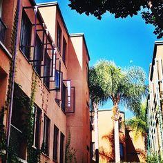 51 Best UC Irvine Campus Map images