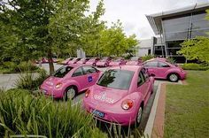 Pink VW bug/beetle
