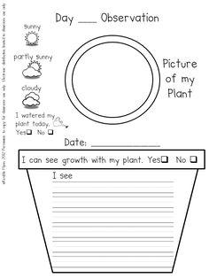 preschool plant journals template | Plant Journal