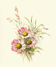 Antique Images: Free Flower Graphic: Vintage Pink Daisy Clip Art and Poem from Wedding Book