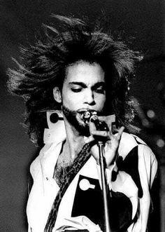 Beautiful Black & white ● Prince ● ♡ ●