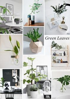 Trend Alert Green Leaves. For the full article please see: http://blog.sampleboard.com/2014/07/24/trend-alert-green-leaves-in-interior-and-art/