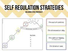 http://speechymusings.com/2013/04/30/regulation-strategies-for-slps/