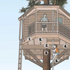 How to build the ultimate treehouse