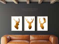Squash Deer Head Set of 3 Giclee Fine Art Print by Silhouetown