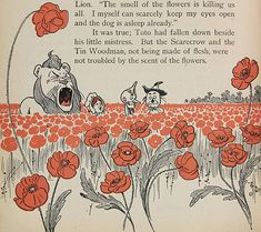 Wizard of Oz poppies - a charm for pain and woe, indeed!