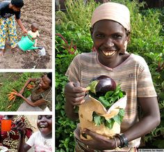 PLANT  A  GARDEN  OF  HEALTH  FOR  30  FAMILIES -  PLEASE, CLICK !! GreaterGood