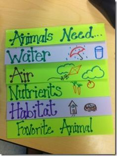 This would be a great way for students to demonstrate the basic needs of animals. They can include at the bottom their favorite animal. Australian Curriculum Y1 - Biological Sciences- ACSSU211 -Living things live in different places where their needs are