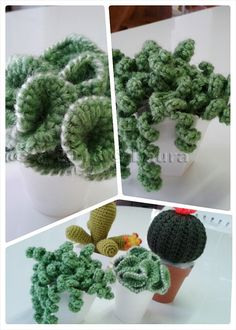 Laura fa: Cactus e bouquet amigurumi Crochet Art, Knit Or Crochet, Freeform Crochet, Crochet Animals, Crochet Dolls, Crochet Home, Crochet Bouquet, Crochet Flowers, Amigurumi Patterns