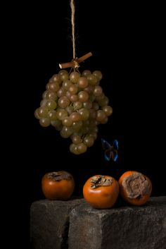 Still life photography of Paulette Tavormina, inspired by 17th century Old Master paintings.