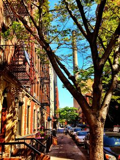 The charming streets of New York City