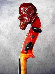 Old man fiddle head