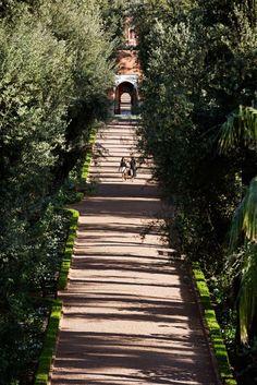 Palace in Marrakesh Morocco | La Mamounia 5-star luxury hotel Spa pool