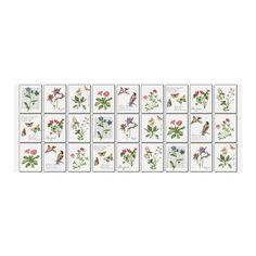 Cerata Florista 6055-00 140 cm - Nakrycie stołu - Akcesoria meblowe - Meble i dekoracje ogrodowe - Ogród