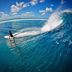 Alana Blanchard - GoPro moment via the Surf Life. SO COOL. I want to do that! www.chicasurfadventures.com/pro-surfer-girls
