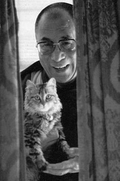 Of course the Dalai Lama likes cats! He's the Dalai Lama for Christ Sake! Dalai Lama, Crazy Cat Lady, Crazy Cats, I Love Cats, Cool Cats, Celebrities With Cats, Celebs, Men With Cats, Animal Gato