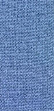 """Blue """"Solid"""" carpet border"""