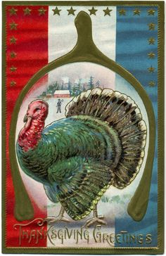Thanksgiving Greetings | by Alan Mays
