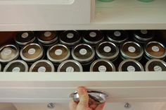 Organized spice drawer - THIS is what I want to do!