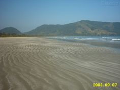 praia da fazenda - Google Search