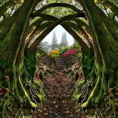Entrance to the Secret Garden in Portland, Oregon.