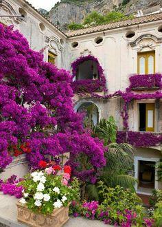 Gardening in Positano, Italy