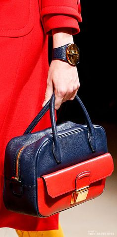 Miu Miu Spring Summer 2014 Miu Miu Handbags, Purses And Handbags, Burberry  Purse 744c7046818