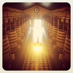 #wine #vin #bordeaux