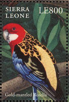 Sierra Leona 2000 - El Perico Multicolor o Rosella Común,es  endémico del sureste de Australia, incluida Tasmania. Fue introducido a Nueva Zelanda donde ha establecido poblaciones estables.