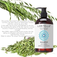 Do away with those pricey, chemical seeped hair items, and go with all-natural remedies for hair loss. There's absolutely nothing like maximizing what nature has to offer. Yogurt Hair Mask, Coconut Oil Hair Mask, Stop Hair Loss, Prevent Hair Loss, Hair Regrowth Shampoo, Hair Follicles, Soften Hair, Organic Shampoo, Hair Loss Remedies