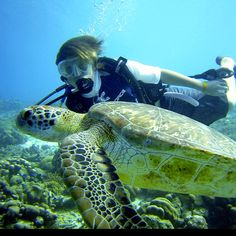 From @Melissa Squires Mathis Weatherall ~ my son diving with a sea turtle in Bonaire