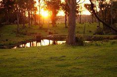 Sunset near Bridport Tasmania
