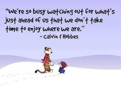 We're a culture of milestones: graduate high school, graduate college, get a job, get married, get promoted, have some kids, retire... this list keeps growing. Milestones are things to be celebrated, but I think sometimes we solely focus on what's ahead and forget about the living in the moment. #livefortoday #calvinandhobbes #foodforthoughtfriday