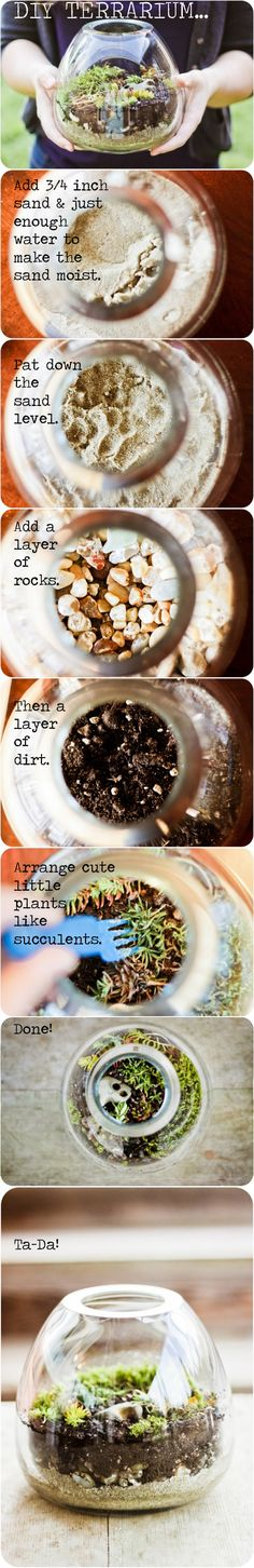 DIY TERRARIUM :: Glass Bowl Terrarium Tutorial