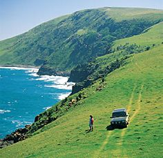 South African Holiday Eastern Cape : The Wild Coast page 2 South African Holidays, South Afrika, Rest Of The World, Adventure Is Out There, Countries Of The World, Wonderful Places, The Great Outdoors, Places To Go, Scenery