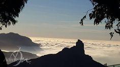 (2) Activity On Canarias (@activityon)   Twitter