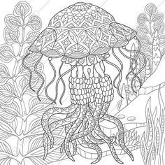 Jellyfish Coloring Page. Adult coloring by ColoringPageExpress➕Coloring Page ➕More Pins Like This At FOSTERGINGER @ Pinterest ➕