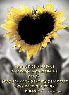 Be grateful quote via Carol's Country Sunshine on Facebook