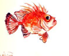 Big Eye Red Fish, original watercolor painting, 8 X 10 in, sea fish art, fish lover painting
